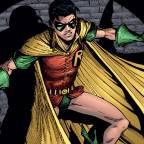 Robin Through The Years